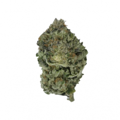 Sitka Weed Works - Micro Collection: Face Punch - 3.5g